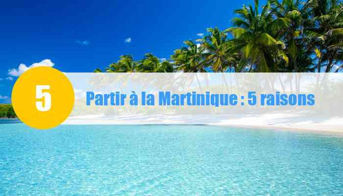 10 raisons de partir en martinique