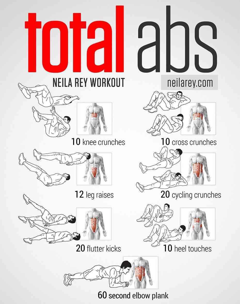 exercices abdos