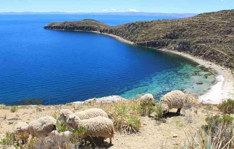 isla del sol lac titicaca bolivie