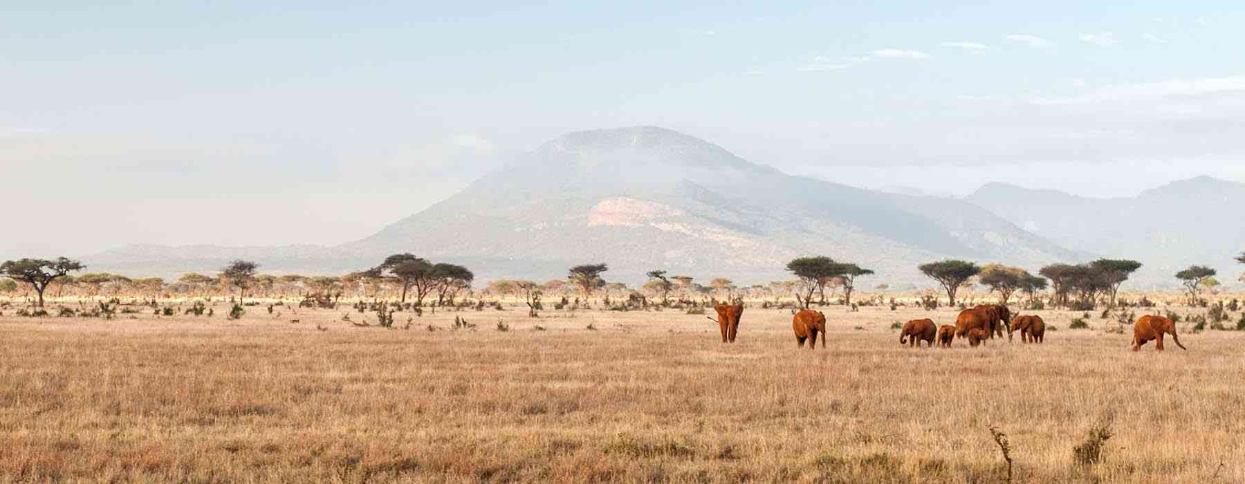 kenya une destination qui tient ses promesses