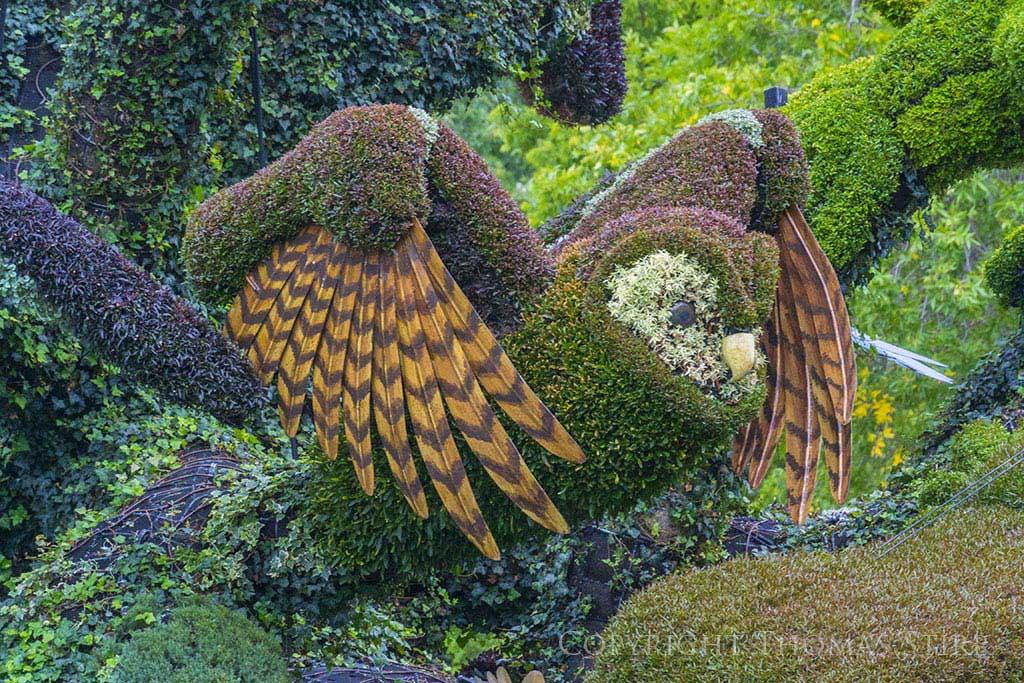 la mosaiculture