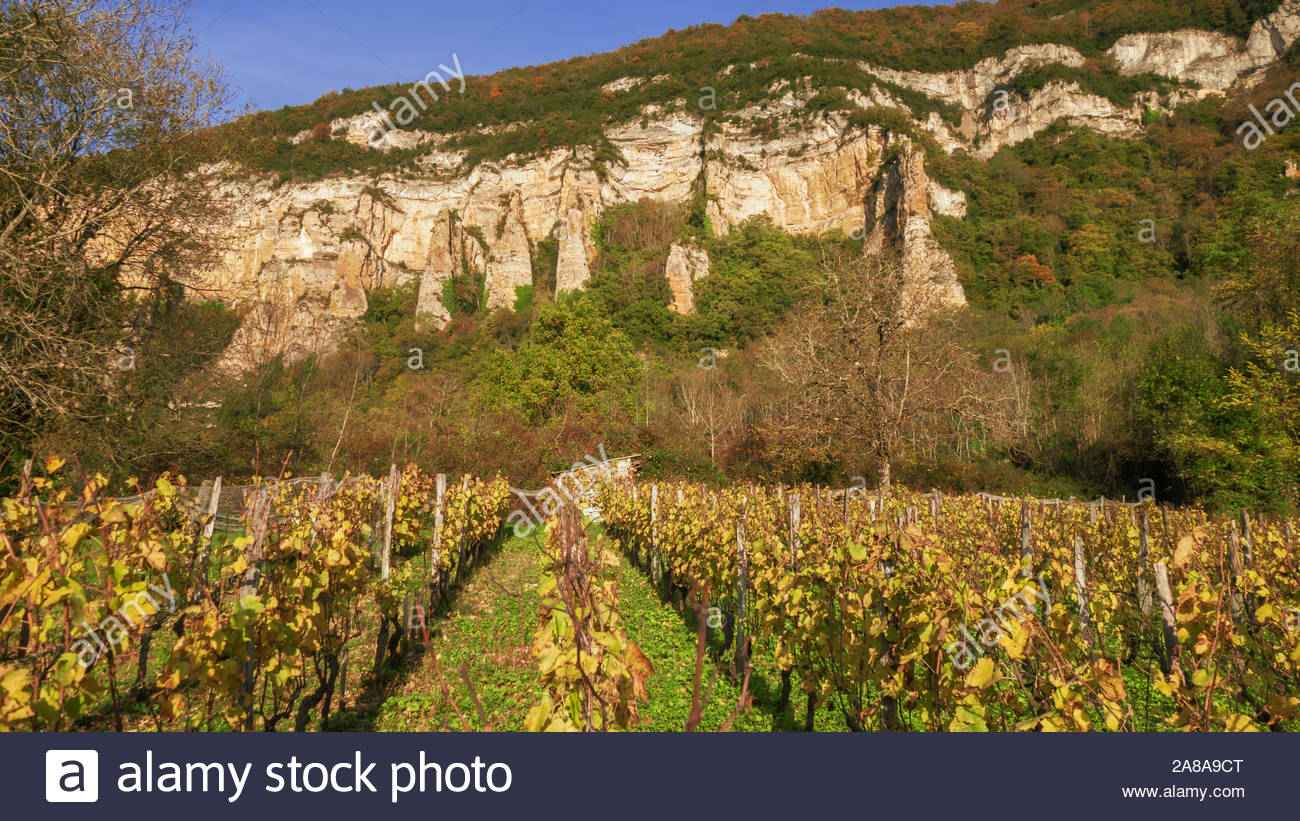 le bugey