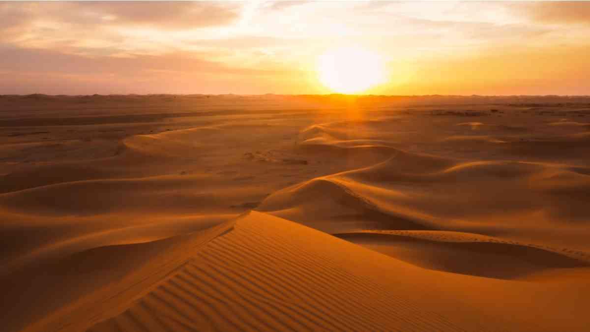 le sahara