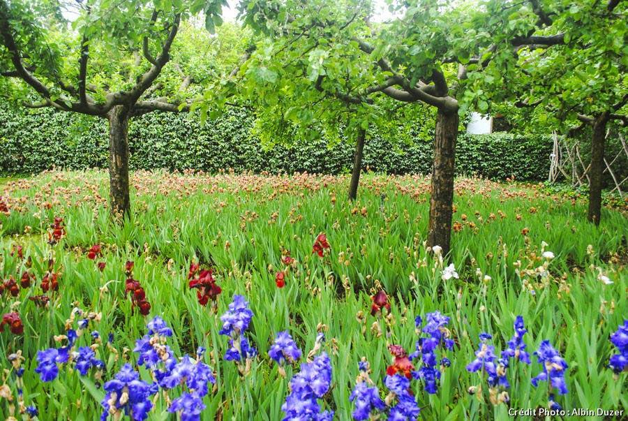 les jardins de provence