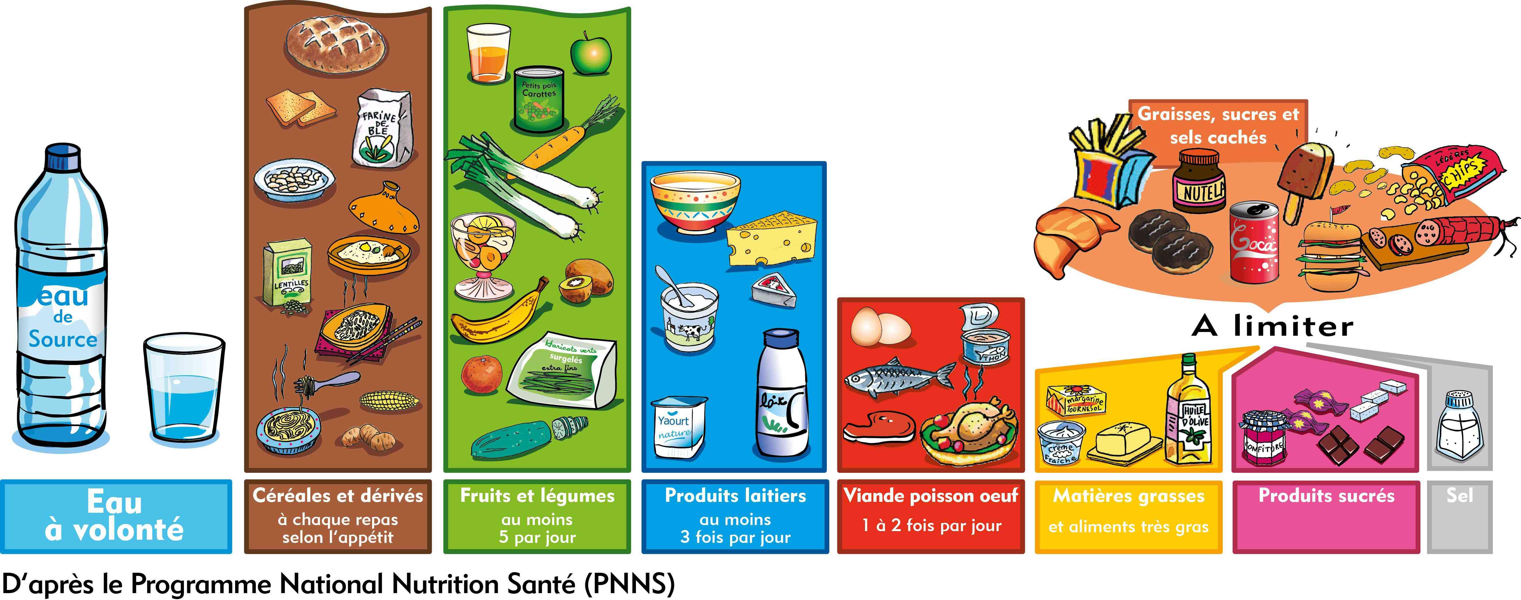 nutrition et alimentation equilibre alimentaire