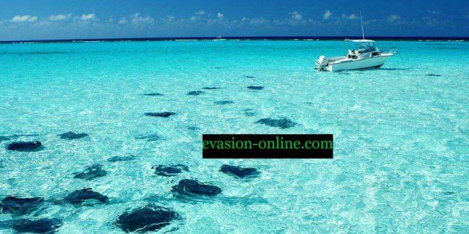 Les Caïmans - Ile de Grand-Caiman