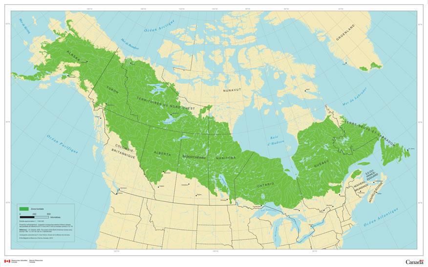 la zone boreale