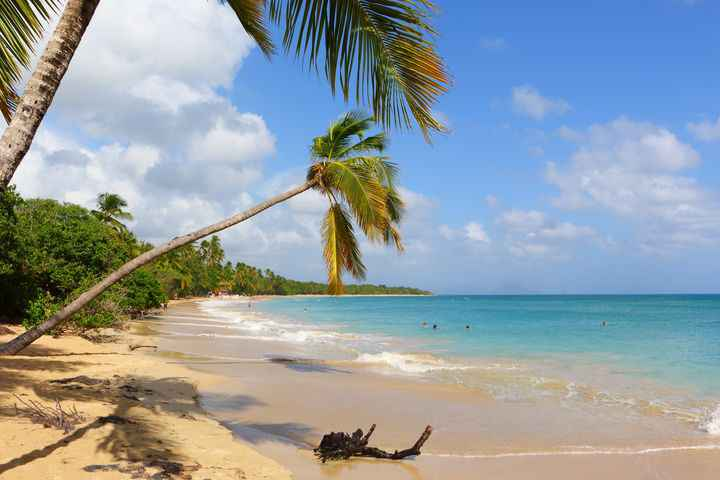 plage de martinique