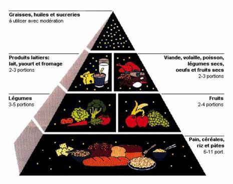 Equilibre et régime alimentaire