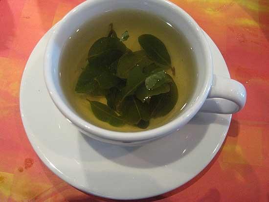 Coca-Tea