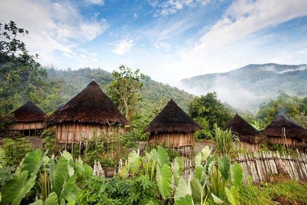 Paysage de Papouasie Nouvelle Guinée
