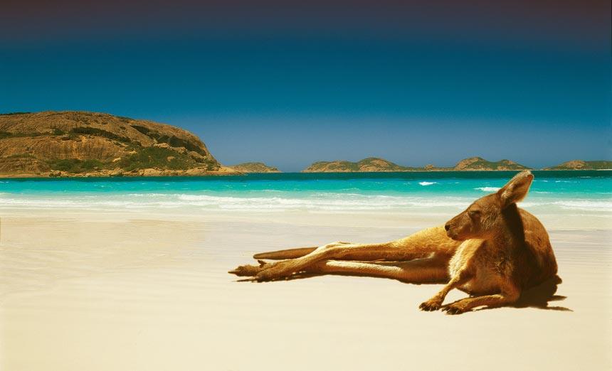 Australie - Voyage