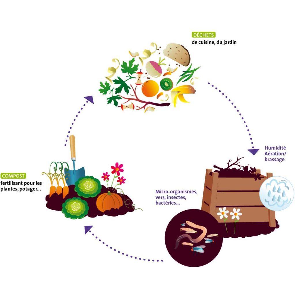 schema du compostage