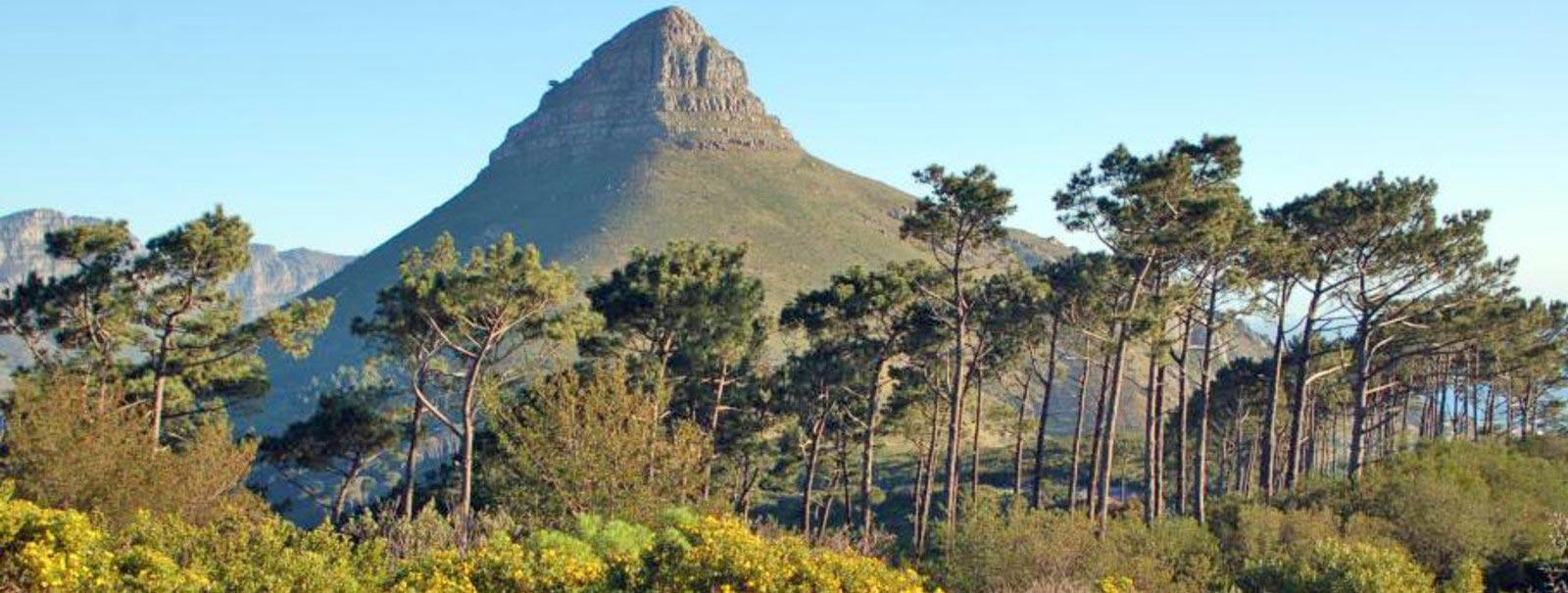 Paysage du Capt Vert - Panorama