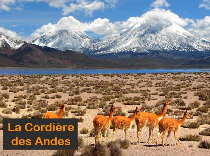 Paysage de Bolivie - La Cordière des Andes