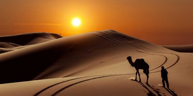 Le Sahara - Désert