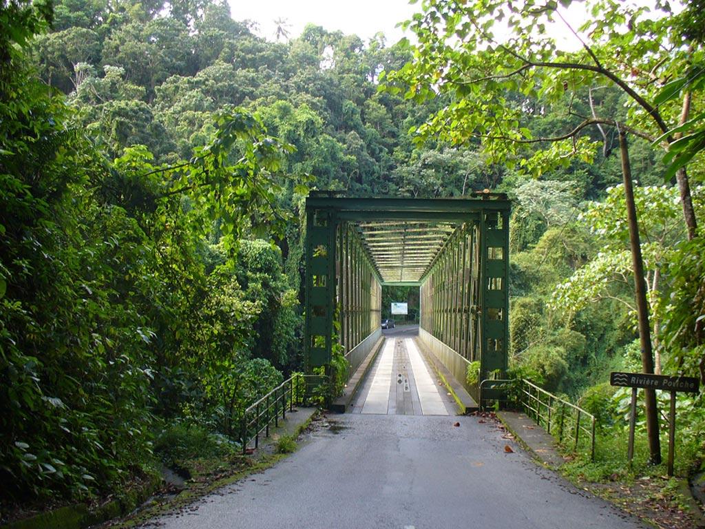 La route de Grand Rivière
