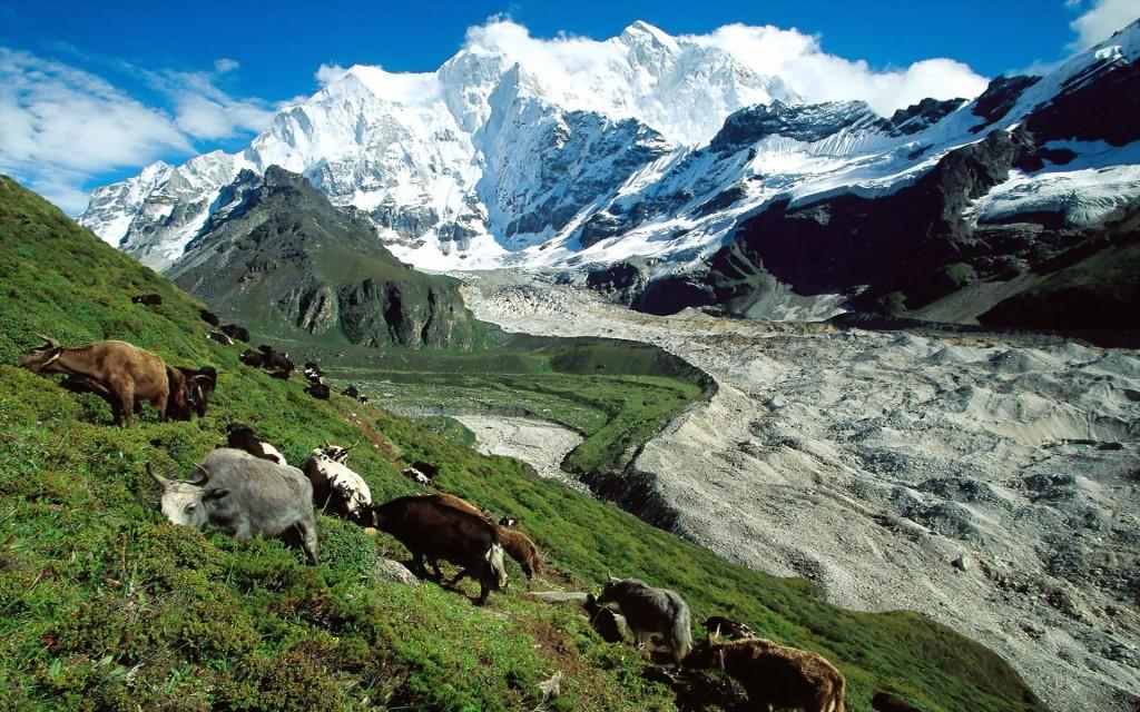 le Tibet vue panoramique