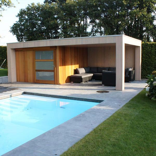 abri de jardin - poolhouse