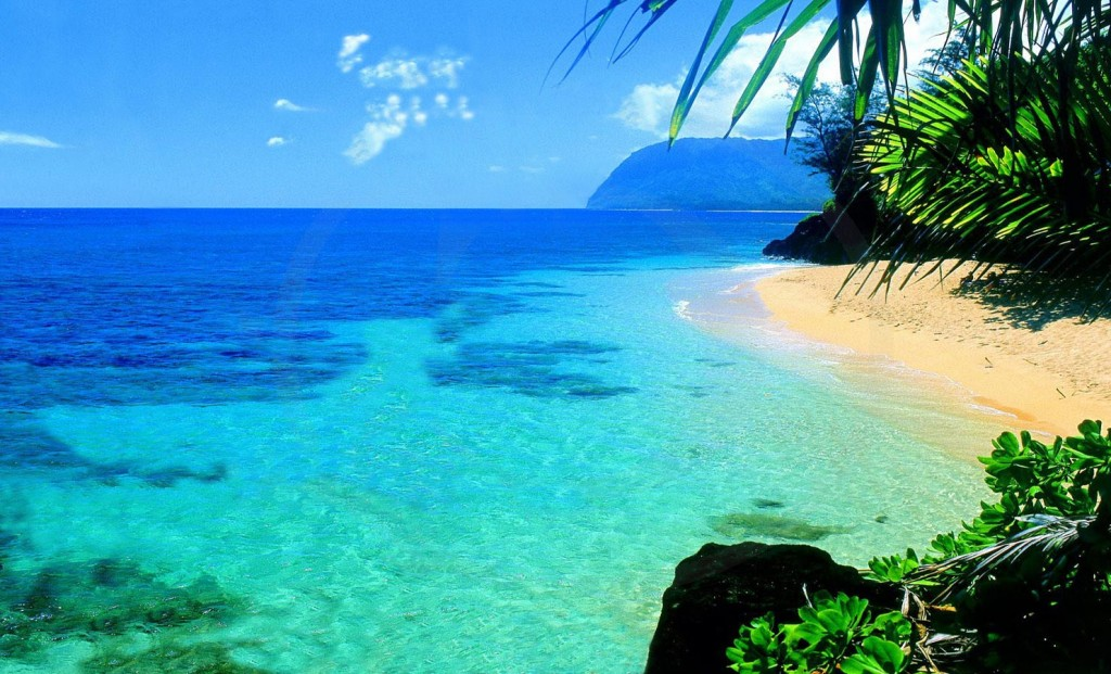 hawaii - plage