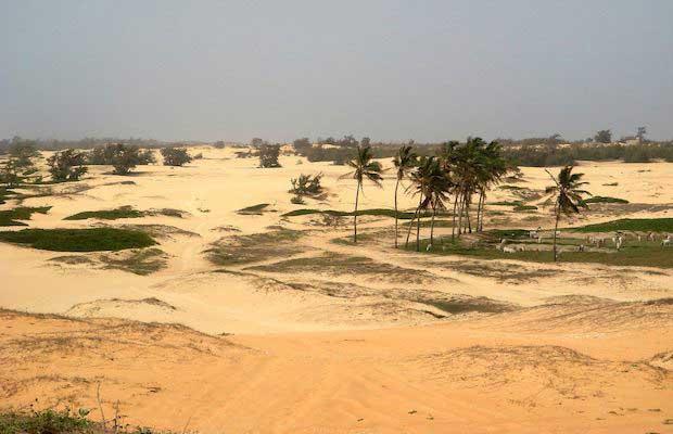 paysages-du-senegal