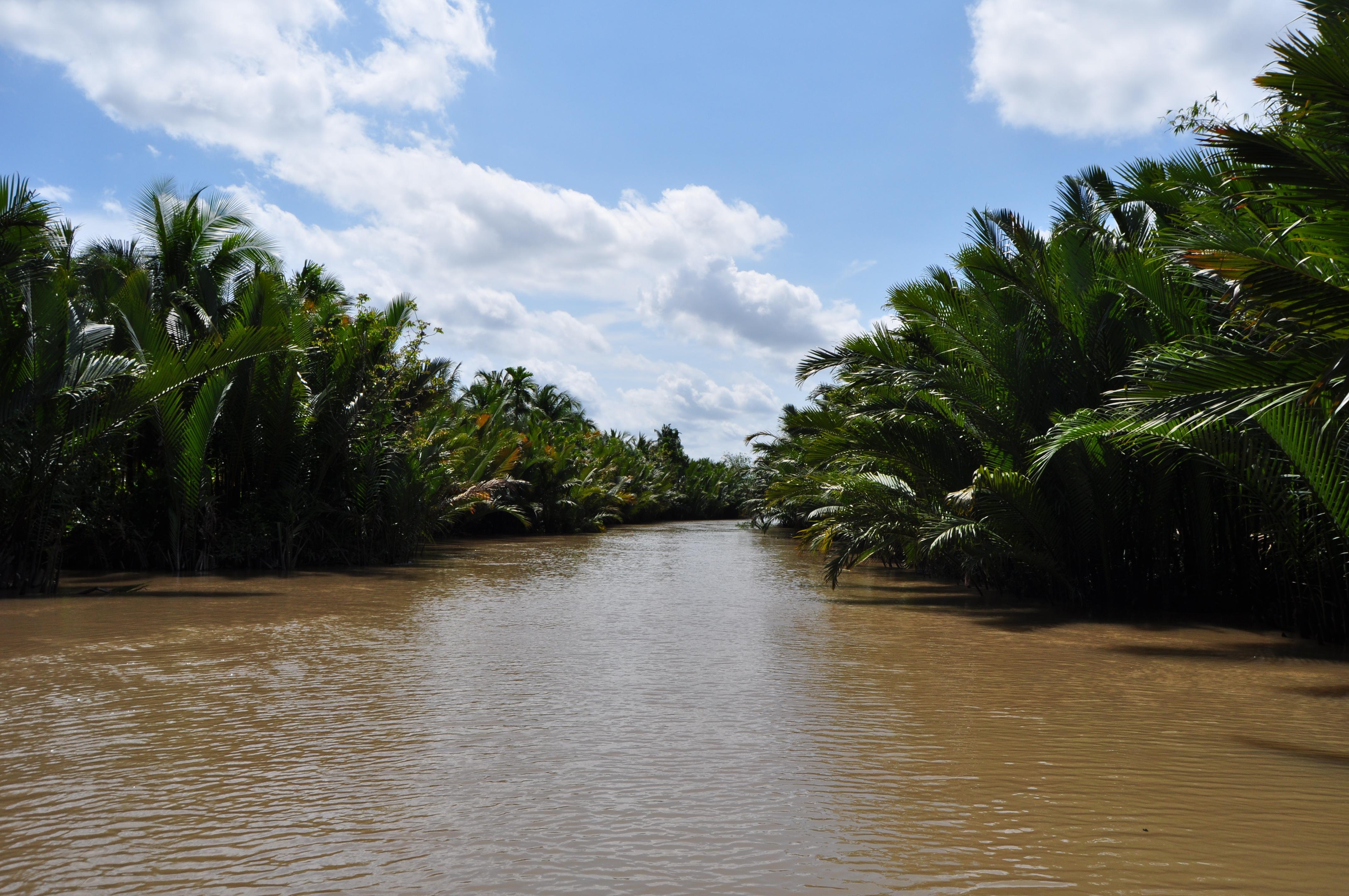 Le Delta du Mékong au Vietnam
