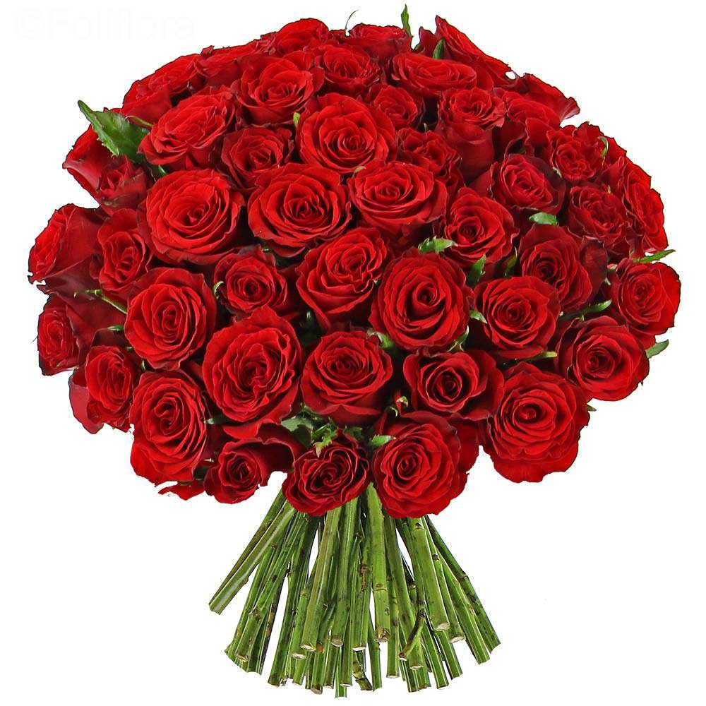 bouquet-roses-rouges