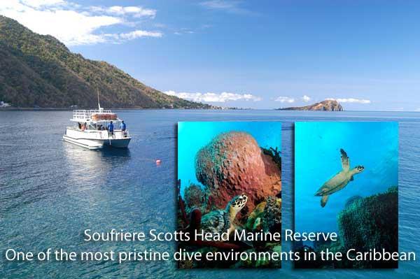 Scott's Head Marine Reserve