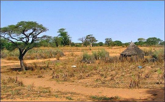 Sahel - Sénégal