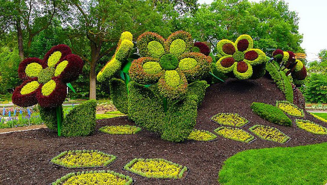 02 big flowers