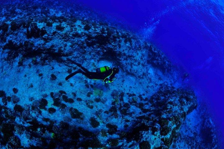 Plongée à Fakarava - Atoll Polynésien