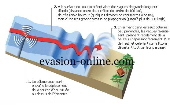 formation-tsunami