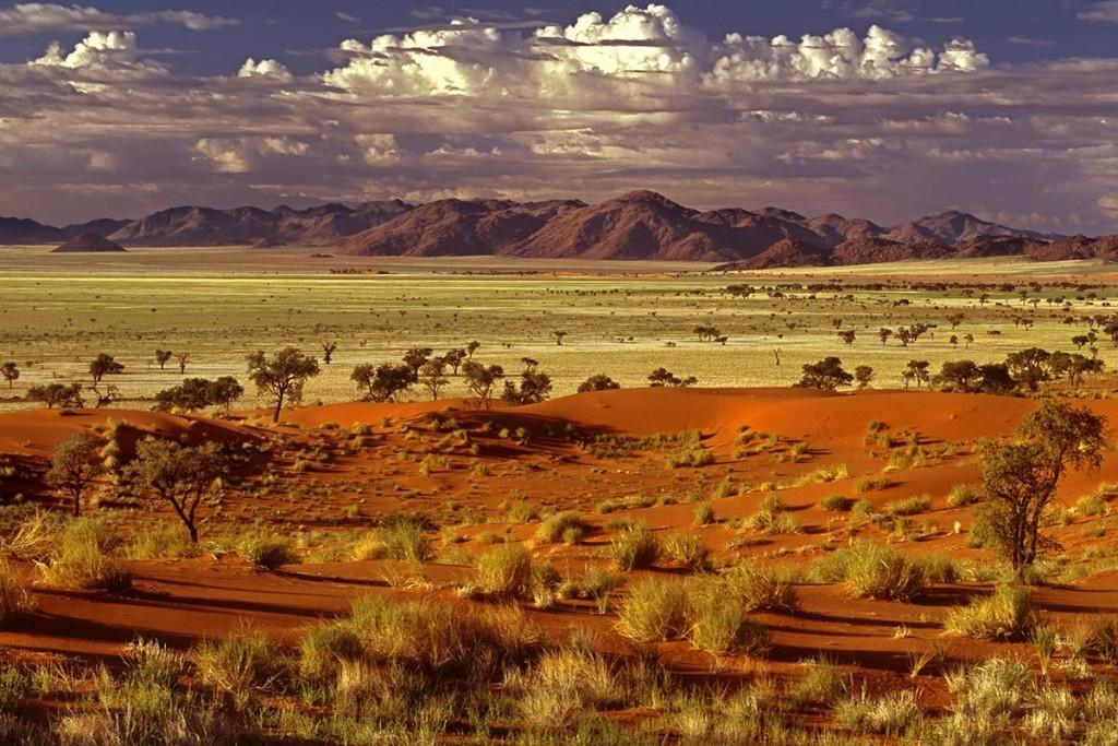 Paysage de Namibie - Photo