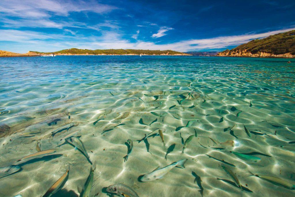 Port Crois - Paysage de bord de mer