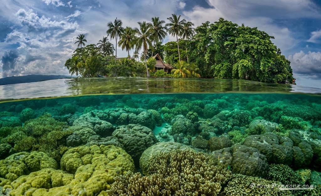 Paysage des îles Salomon