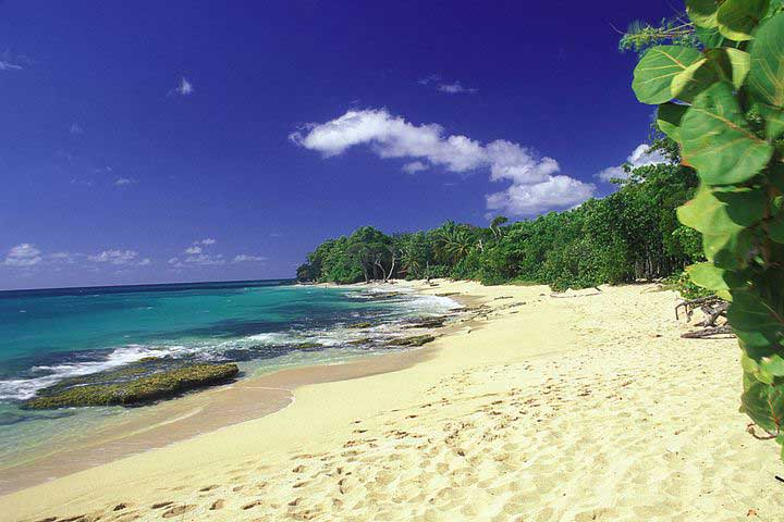 Anse - Plage de Martinique