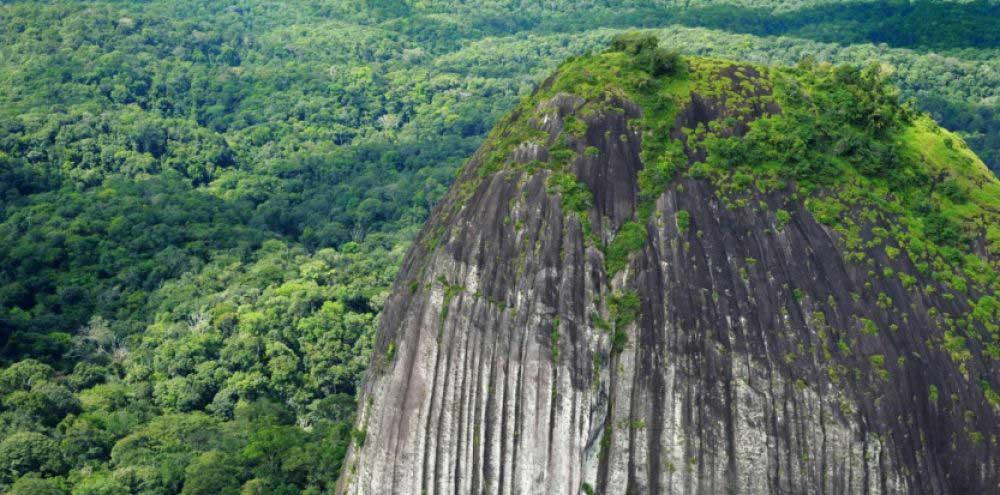 Paysage de Guyane - massif-du-mitaraka