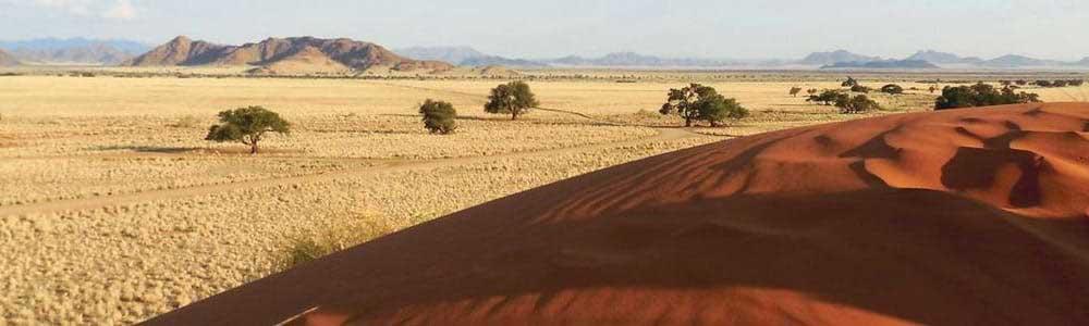 Namibie - Paysage du désert de Namib
