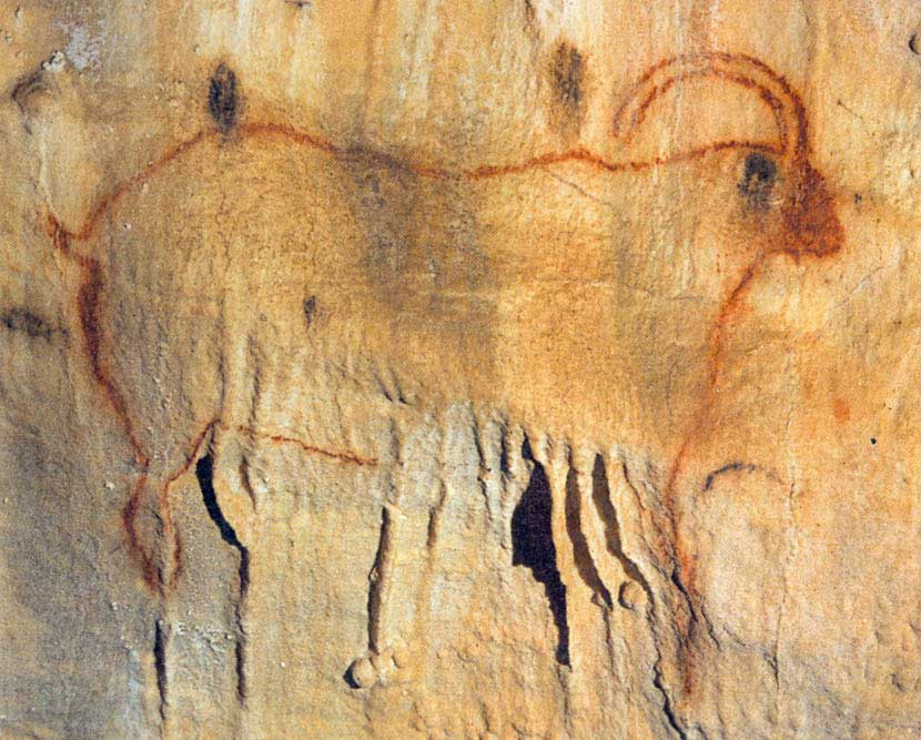 Grotte de Cougnac
