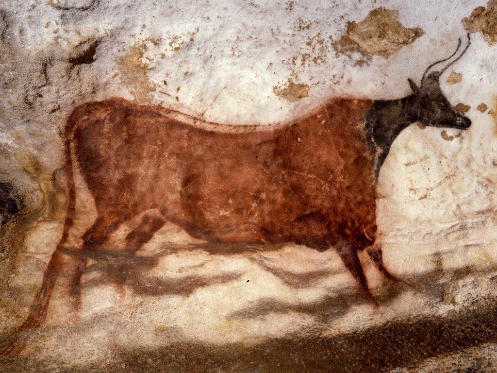 Vache rouge à tête noire de Lascaux