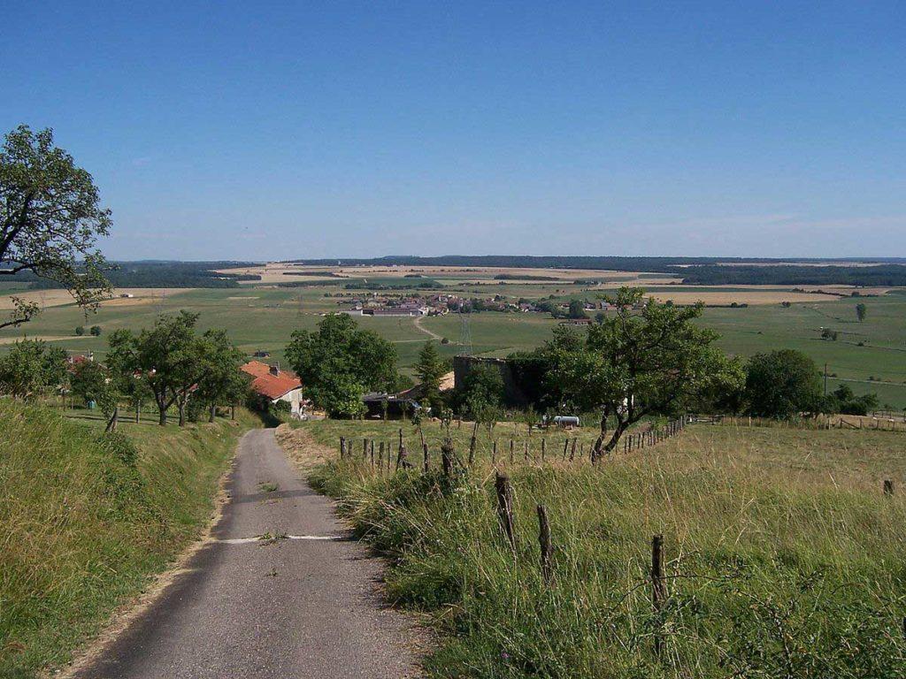 Photo d'une campagne vue du bois