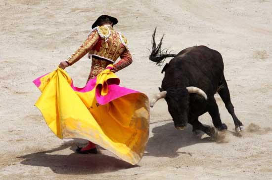 Image de corrida