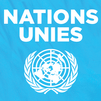 Les Nations Unies - ONU