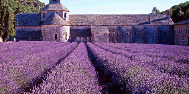 jardin-de-la-provence
