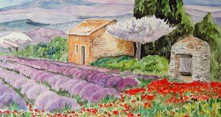 paysage-de-provence