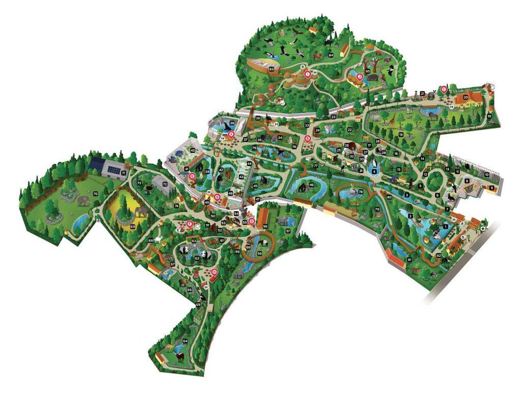 Plan - zoo de Beauval