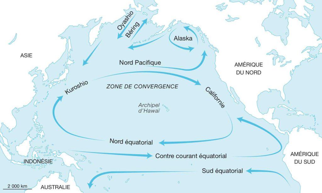 Les courants du Pacifique nord