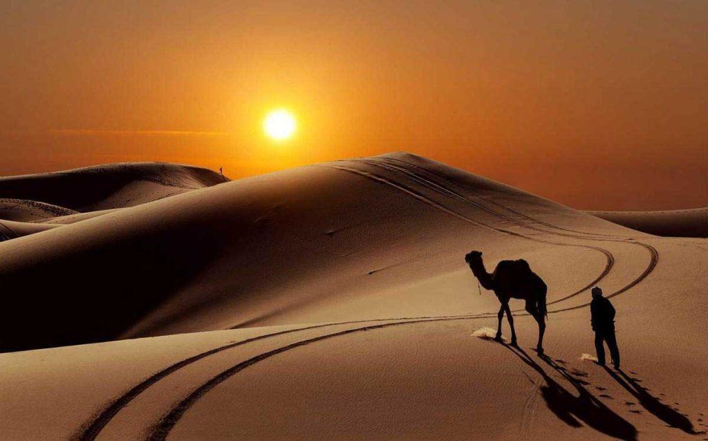 Les Touareg du Sahara