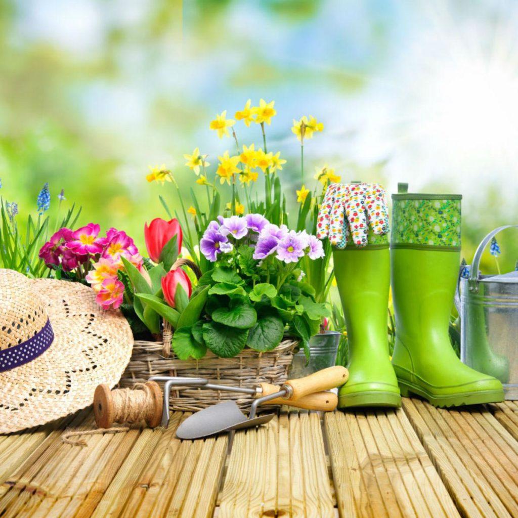 Le jardinage - Bon pour la Santé
